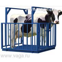 Весы для взвешивания животных ВСП4-1000ЖСО